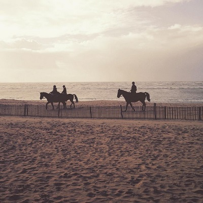 Chevaux plage